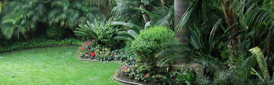 Backyard Landscaping Ideas San Diego reference of cool san diego backyard landscaping excellent sloping backyard landscaping ideas for making greater home San Diego Landscape Water Feature